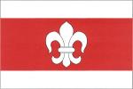 Vlajka Čechtice