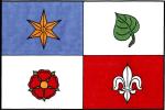 Vlajka Plasy