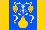 Vlajka Tupesy