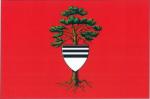 Vlajka Týniště nad Orlicí