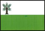 Vlajka Vidnava