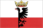 Vlajka Zlonice